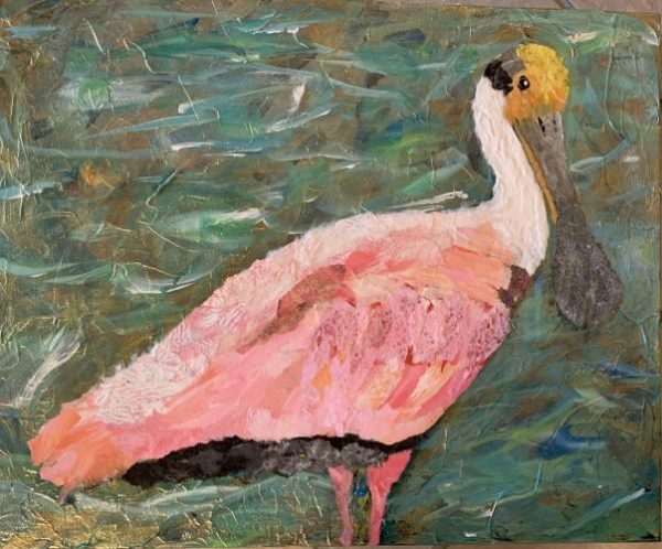 Roseate Spoonbill collage